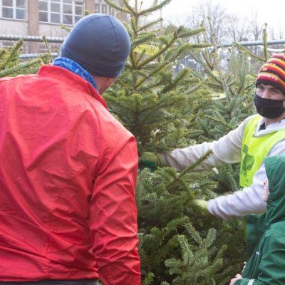 2020-12-07 Charity - Christmas Trees (2)